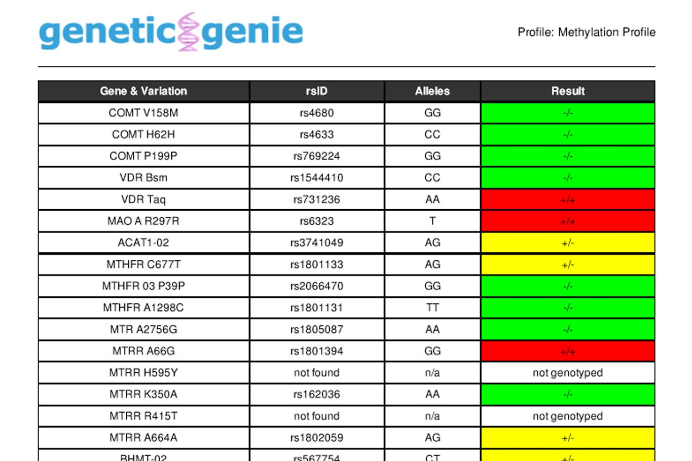 Genetic Genie Methylation Profile Test Results